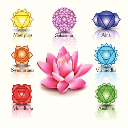 Chakra, i fiori della vita